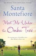 Cover-Bild zu Montefiore, Santa: Meet Me Under the Ombu Tree (eBook)