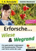 Cover-Bild zu Erforsche ... Wiese & Wegrand von Rosenwald, Gabriela