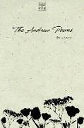 Cover-Bild zu The Andrew Poems von Wagner, Shelly