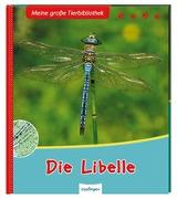 Cover-Bild zu Meine große Tierbibliothek: Die Libelle von Gutjahr, Axel