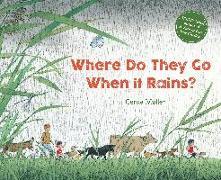 Cover-Bild zu Where Do They Go When It Rains? von Muller, Gerda