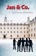 Cover-Bild zu Hollenstein, David: Jan & Co. - Ärger in der Eliteschule