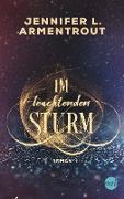 Cover-Bild zu eBook Im leuchtenden Sturm