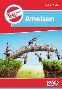 Cover-Bild zu Themenheft Ameisen von Zindler, Kathrin