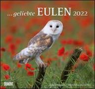 Cover-Bild zu DUMONT Kalender (Hrsg.): geliebte Eulen 2022 - DUMONT Wandkalender - mit den wichtigsten Feiertagen - Format 38,0 x 35,5 cm