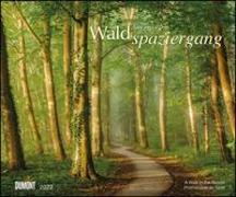 Cover-Bild zu Goor, Lars van de (Fotograf): Waldspaziergang 2022 - Fotokunst-Kalender - Querformat 58,4 x 48,5 cm - Spiralbindung