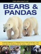 Cover-Bild zu Exploring Nature: Bears & Pandas von Bright, Michael