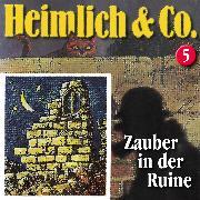 Cover-Bild zu Herwald, Hans-Joachim: Heimlich & Co., Folge 5: Zauber in der Ruine (Audio Download)