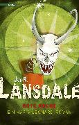 Cover-Bild zu Lansdale, Joe R.: Rote Rache (eBook)