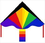 Cover-Bild zu Drachen Simple Flyer Rainbow