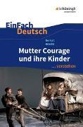 Cover-Bild zu EinFach Deutsch ... verstehen von Volk, Stefan