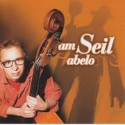 Cover-Bild zu Am Seil abelo von Schweizer Radio DRS (Hrsg.)
