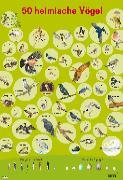 Cover-Bild zu Mein Lernposter: VE 5 50 Heimische Vögel