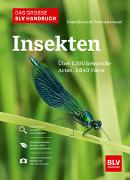 Cover-Bild zu Gerhardt, Ewald: Das große BLV Handbuch Insekten