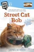 Cover-Bild zu Bowen, James: Street Cat Bob (eBook)