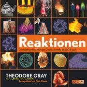 Cover-Bild zu Reaktionen von Gray, Theodore