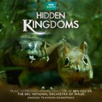Cover-Bild zu Hidden Kingdoms. Original Soundtrack