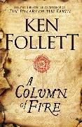 Cover-Bild zu eBook A Column of Fire