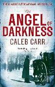 Cover-Bild zu eBook The Angel of Darkness