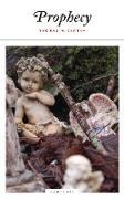 Cover-Bild zu Mccarthy, Thomas: Prophecy (eBook)