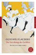 Cover-Bild zu Flaubert, Gustave: Die Erziehung der Gefühle