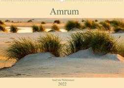 Cover-Bild zu Wolff, Alexander: Amrum Insel am Wattenmeer (Wandkalender 2022 DIN A2 quer)