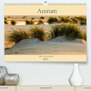 Cover-Bild zu Wolff, Alexander: Amrum Insel am Wattenmeer (Premium, hochwertiger DIN A2 Wandkalender 2022, Kunstdruck in Hochglanz)