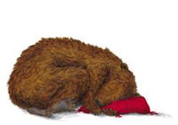 Cover-Bild zu Schärer, Kathrin (Illustr.): Bärenschlaf Postkarten VE 10