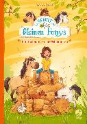 Cover-Bild zu Die Schule der kleinen Ponys - Ein Heuhaufen voller Geheimnisse von Wolff, Anne