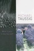 Cover-Bild zu Taussig, Michael: What Color is the Sacred?
