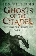Cover-Bild zu Ghosts of the Citadel (The Copper Promise: Part I) (eBook) von Williams, Jen