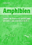 Cover-Bild zu Biologie. Amphibien. Sekundarstufe 1 von Graf, Erwin