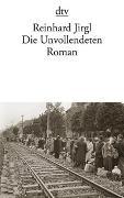 Cover-Bild zu Jirgl, Reinhard: Die Unvollendeten