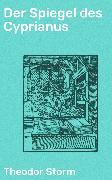 Cover-Bild zu Der Spiegel des Cyprianus (eBook) von Storm, Theodor