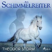 Cover-Bild zu Der Schimmelreiter (Audio Download) von Storm, Theodor