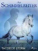 Cover-Bild zu Der Schimmelreiter (eBook) von Storm, Theodor