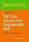 Cover-Bild zu Big Public Data aus dem Programmable Web (eBook) von Matter, Ulrich
