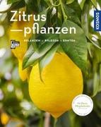 Cover-Bild zu Zitruspflanzen von Große Holtforth, Dominik
