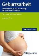 Cover-Bild zu Geburtsarbeit von Deutscher Hebammenverband
