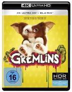 Cover-Bild zu Gremlins 1: Kleine Monster von Frances Lee McCain (Schausp.)