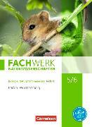 Cover-Bild zu Fachwerk Naturwissenschaften 5./6. Schuljahr. Biologie, Naturphänomene und Technik. Schülerbuch. BW von Baur, Thomas