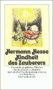 Cover-Bild zu Hesse, Hermann: Kindheit des Zauberers