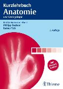 Cover-Bild zu Kurzlehrbuch Anatomie (eBook) von Bommas-Ebert, Ulrike