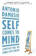 Cover-Bild zu Damasio, Antonio: Self Comes to Mind