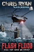 Cover-Bild zu Ryan, Chris: Flash Flood