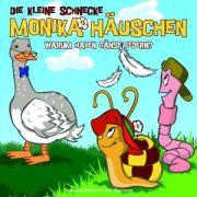 Cover-Bild zu Naumann, Kati: Die kleine Schnecke Monika Häuschen 02. Warum haben Gänse Federn?