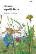 Cover-Bild zu Bolliger, Max: Ciboule, le petit lièvre