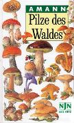Cover-Bild zu Amann, Gottfried: Pilze des Waldes