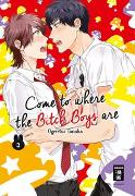 Cover-Bild zu Tanaka, Ogeretsu: Come to where the Bitch Boys are 03