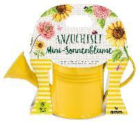 Cover-Bild zu Blatt & Blüte Mini-Sonnenblume in Giesskanne VE 6